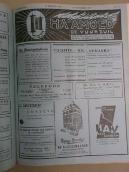 haamoed- de vuurzuil (2)