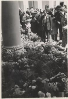 Goudsbloemen en anjers bij paleis Noordeinde - fotograaf A. Ament